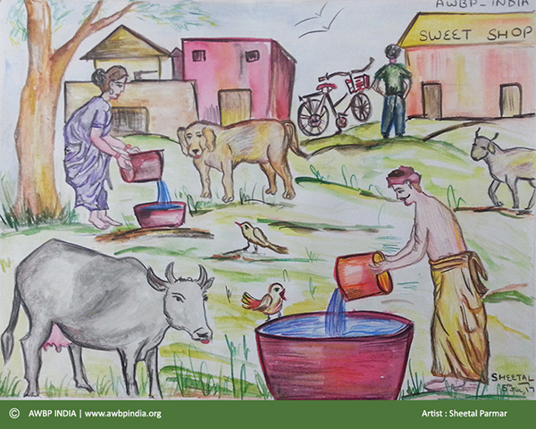 water to animals