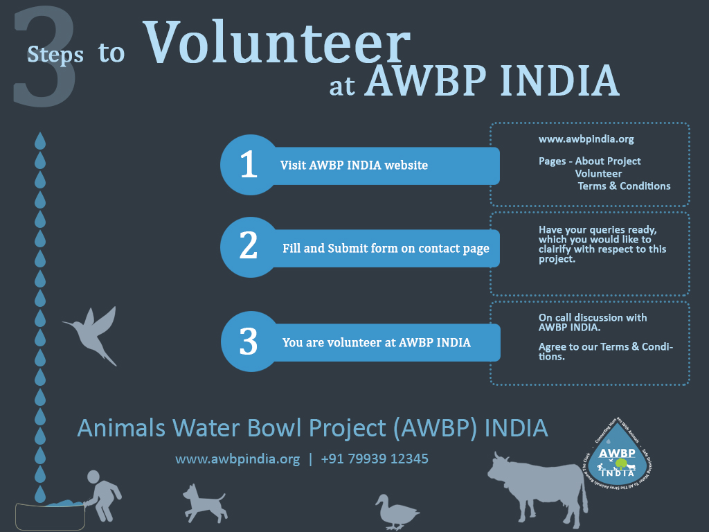 3 Steps to Volunteer at AWBP INDIA