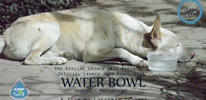 Water Bowl Short Film Poster