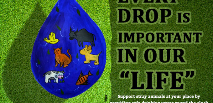 every water drop important in animals life