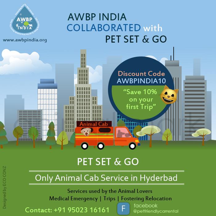 awbp trust collaboration with pet set & go